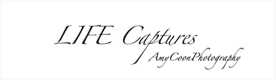LifeCapturesblog_edited-1